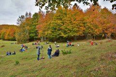 Lo splendore del filiage silano, la più bella espressione dell'autunno