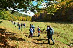 I-benefici-del-Trekking