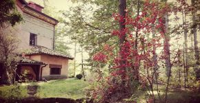 Bed & Breakfast Residenza le Cuturelle