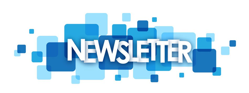 newsletter camminasila