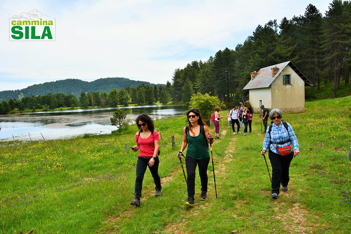 Scopri gli 11 benefici del Trekking