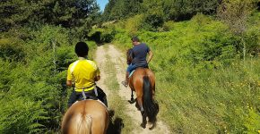 Passeggiata a Cavallo in Sila