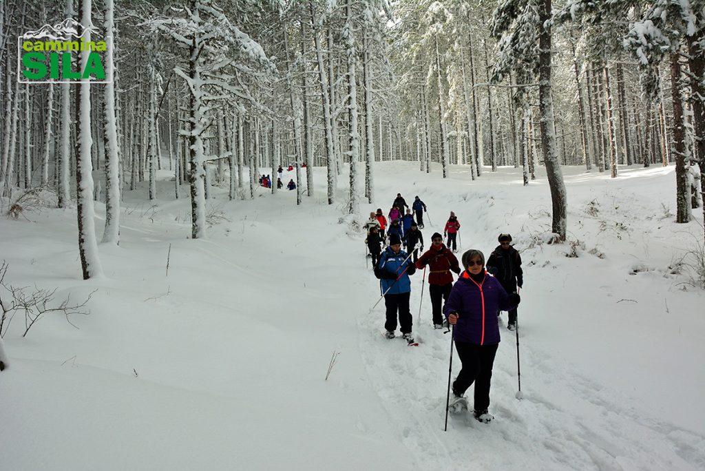 Camminare sulla neve con le ciaspole5