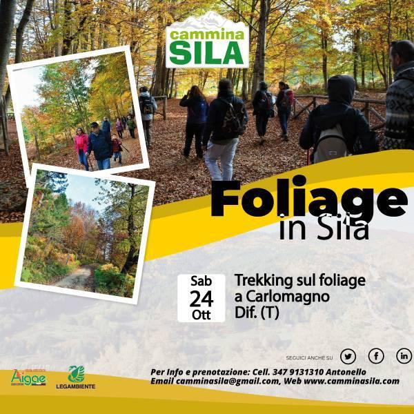 Foliage a Carlomagno Sabato 24 Ottobre