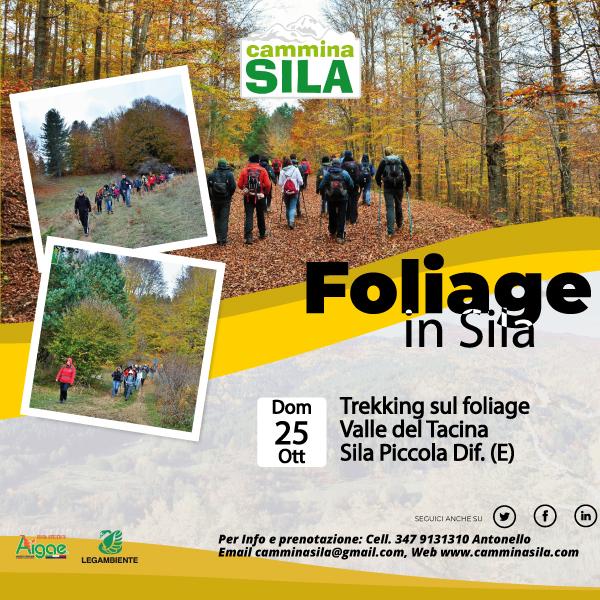 Foliage nella Valle del Tacina Domenica 25 Ottobre