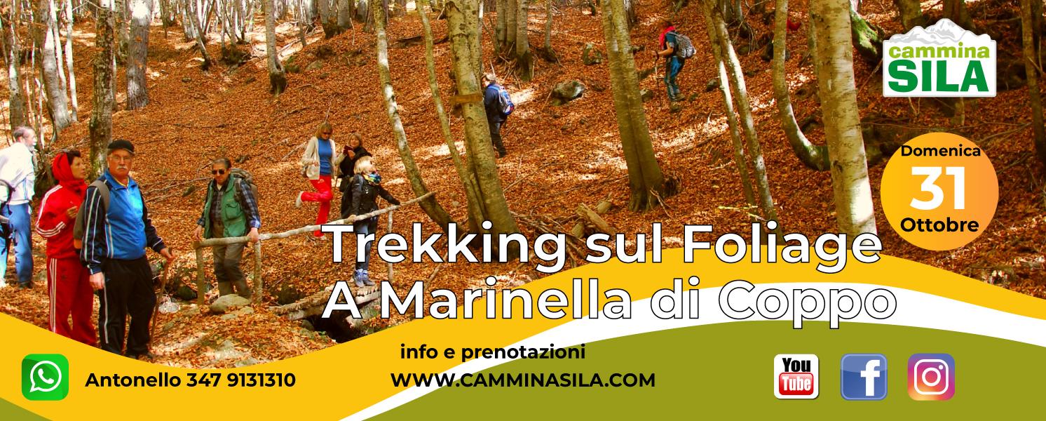 Domenica 31 Foliage a Marinella di Coppo clicca sull'immagine per le info
