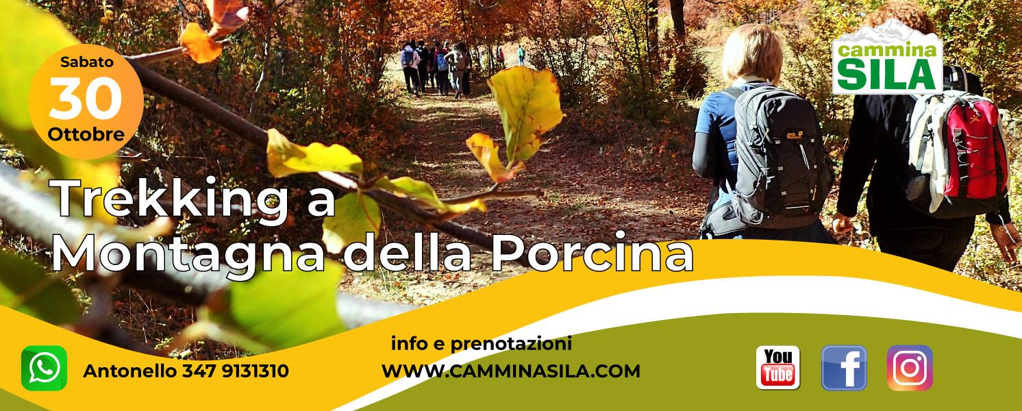 Sabato 30 Ottobre Foliage a Montagna della Porcina clicca sull'immagine per le info